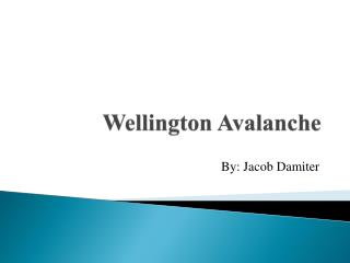 Wellington Avalanche