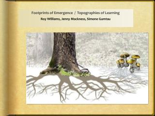 Footprints of Emergence  /  Topographies of Learning  Roy Williams, Jenny Mackness, Simone Gumtau
