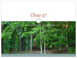 Chap 37