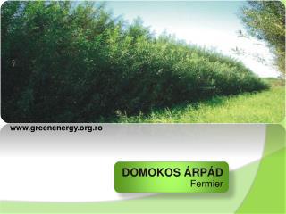 DOMOKOS  ÁRPÁD