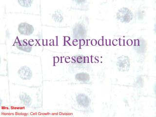Asexual Reproduction  presents: