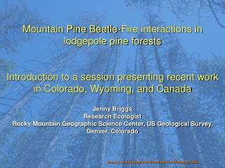 January 19, 2011 Regional Prescribed Fire Workshop, USFS