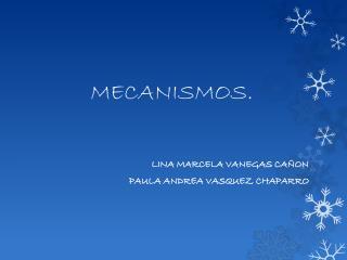 MECANISMOS.