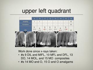 upper left quadrant