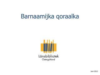 Barnaamijka qoraalka