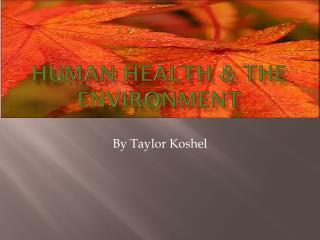 Human health & the environment