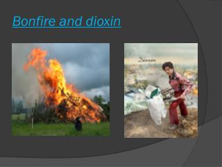 Bonfire and dioxin