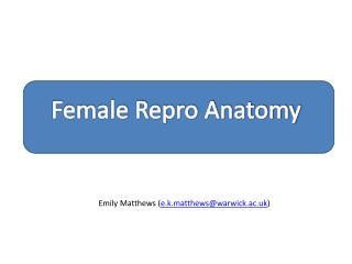 Female Repro  Anatomy