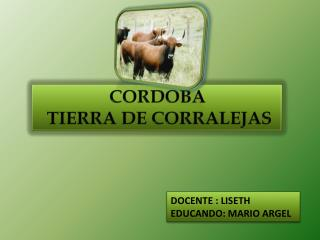 CORDOBA TIERRA DE CORRALEJAS