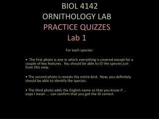O BIOL 4142 ORNITHOLOGY LAB  PRACTICE  QUIZZES Lab 1
