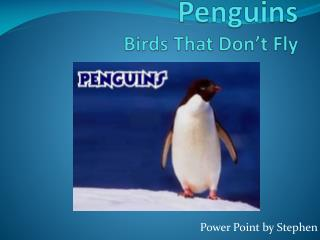 Penguins Birds  T hat  D on't Fly