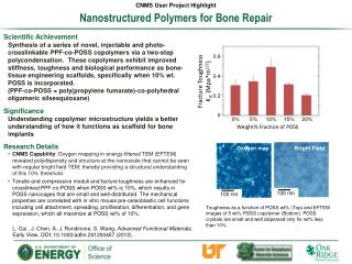 Nanostructured  Polymers  for  Bone Repair