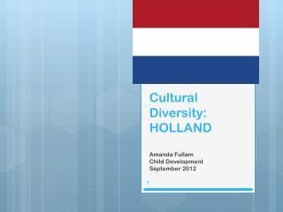 Cultural Diversity: HOLLAND