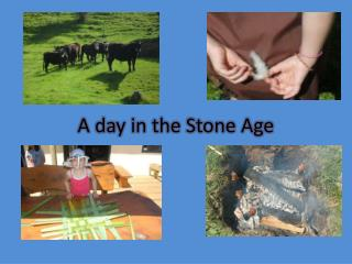 A day in the Stone Age