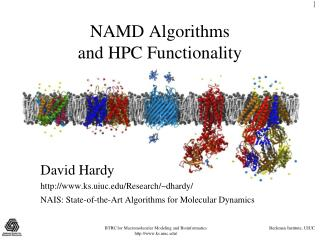 NAMD Algorithms and HPC Functionality