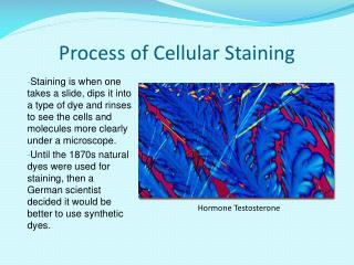 Process of Cellular Staining