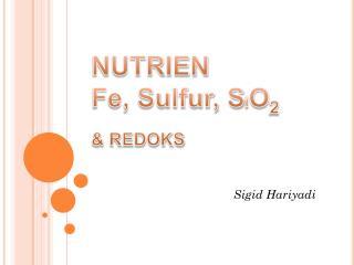 NUTRIEN  Fe, Sulfur, S i O 2 & REDOKS