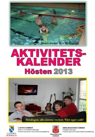 LUDVIKA KOMMUN                 Kultur- och fritidsförvaltningen