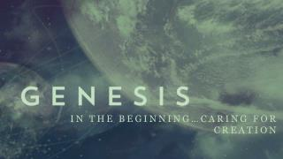 In the Beginning…Caring For Creation