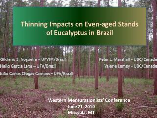 Thinning Impacts on Even-aged Stands  of Eucalyptus in Brazil