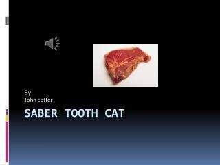 Saber Tooth  C at