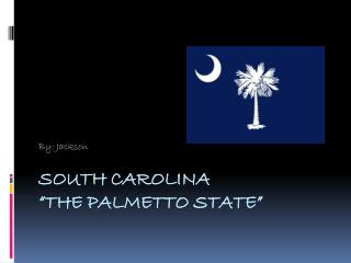 "South Carolina ""The Palmetto State"""