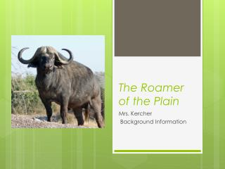 The Roamer of the Plain