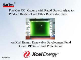 Flue Gas CO 2  Capture with Rapid Growth Algae to Produce Biodiesel and Other Renewable Fuels
