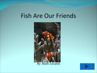 Fish Are Our Friends