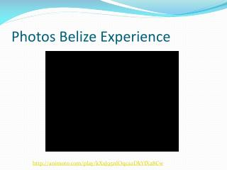 Photos Belize Experience