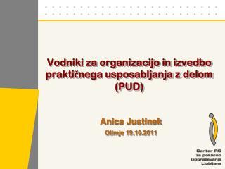 Vodniki za organizacijo in izvedbo praktičnega usposabljanja z  delom (PUD)