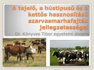 A tejelő, a  hústipusú  és a kettős hasznosítású szarvasmarhafajták jellegzetességei