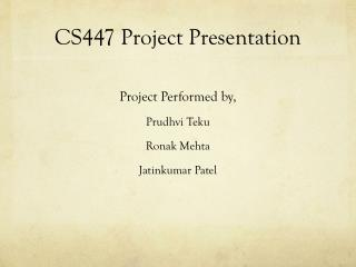 CS447 Project Presentation