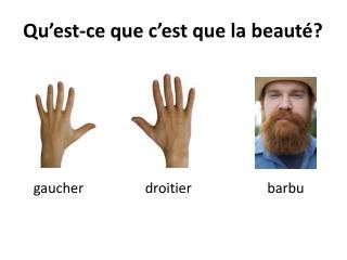 Qu'est-ce que c'est que la beauté?