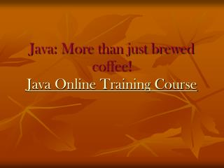 Java Online Training Course - Trainingicon