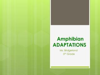 Amphibian ADAPTATIONS