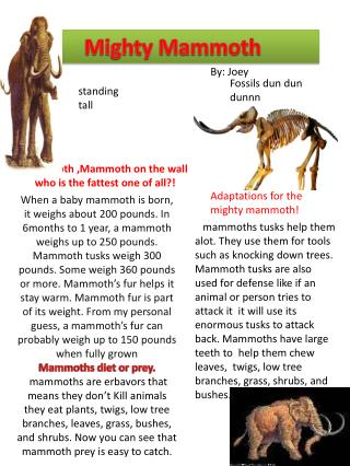 Mighty Mammoth