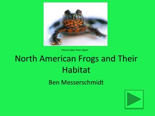 North American Frogs and Their Habitat