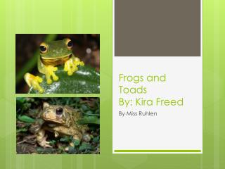 Frogs and Toads By:  Kira  Freed