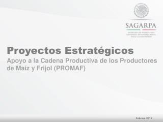 Proyectos Estratégicos Apoyo  a la Cadena Productiva de los Productores de Maíz y Frijol (PROMAF)