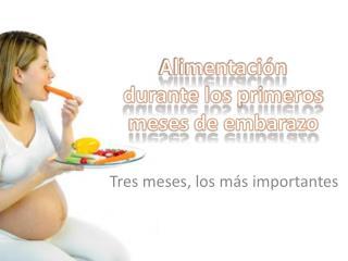Alimentación durante los primeros meses de embarazo