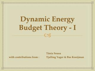 Dynamic Energy  Budget  Theory  - I