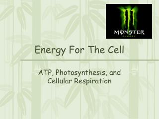 Energy For The Cell