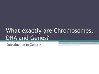 What exactly are Chromosomes, DNA and Genes?