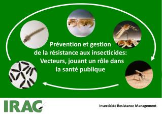 Insecticide Resistance Management