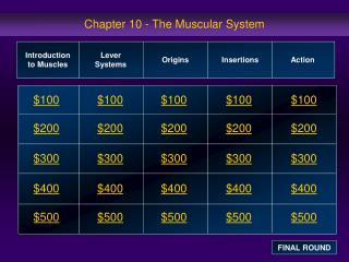 Chapter 10 - The Muscular System