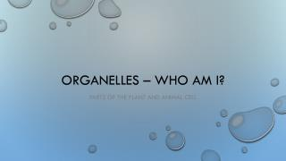 Organelles � Who am I?