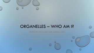 Organelles � Who am I?