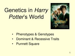 Genetics in  Harry Potter 's World