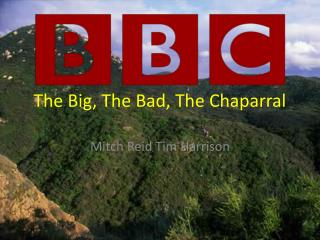 The Big, The Bad, The Chaparral